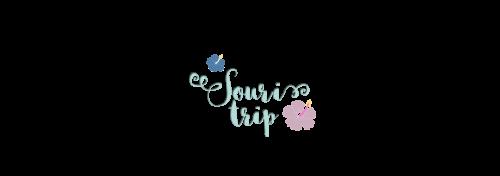 i viaggi di souri trip